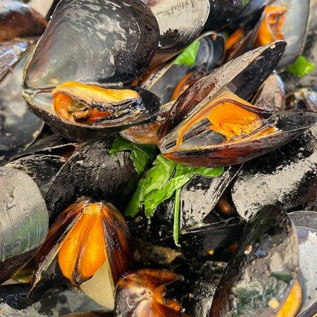 Terracina, Italien: Ottima qualità di pesce. Antipasti, primi e contorni eccezionali.