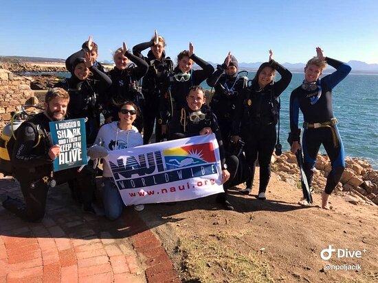 Go Dive Mossel Bay
