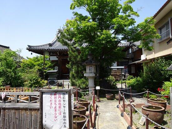 本堂と庭園と蓮の樽、向かって右側に寺務所があります