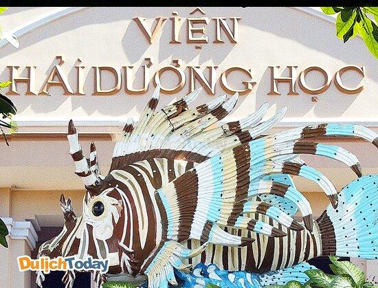 𝗩𝗶𝗲̣̂𝗻 𝗛𝗮̉𝗶 𝗗𝘂̛𝗼̛𝗻𝗴 𝗛𝗼̣𝗰 Địa chỉ: Số 1, Cầu Đá, Trần Phú, Thành phố Nha Trang, Khánh Hòa Viện Hải dương học Nha Trang là nơi nghiên cứu đời sống các loài động thực vật biển tại thành phố Nha Trang tỉnh Khánh Hòa.Viện này được thành lập vào năm 1923 có địa chỉ tại số 1 Cầu Đá, cách trung tâm thành phố Nha Trang khoảng 6km về phía Đông Nam. Địa điểm du lịch này có trên 20.000 mẫu vật của 4.000 loại sinh vật biển được lưu giữ, sưu tầm và nuôi dưỡng trong nhiều năm.