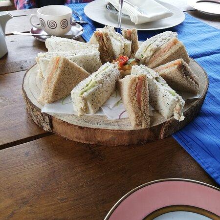 Cortes de la Frontera, Spain: Afternoon tea on the terrace