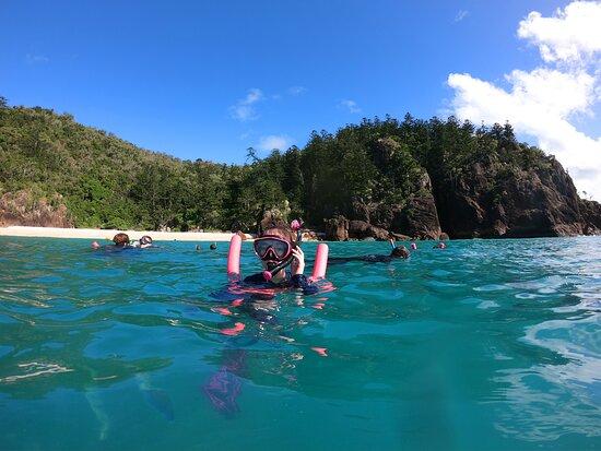 Hook Island Reef - Northern Tip