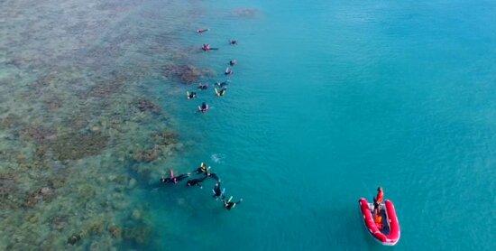 Hook Island Reef - North Western Tip