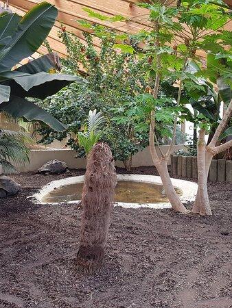 Tropiquarium