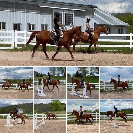 Bridle Hill Farm - Azu Olvera 🐴 Francoise Cherry 🐴 GP Riding Package 🐴Group Lesson 5_15_2021