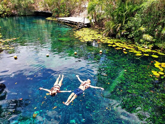 Mayan Jungle Expedition with private cenotes and mayan village: Swimming in a Cenote
