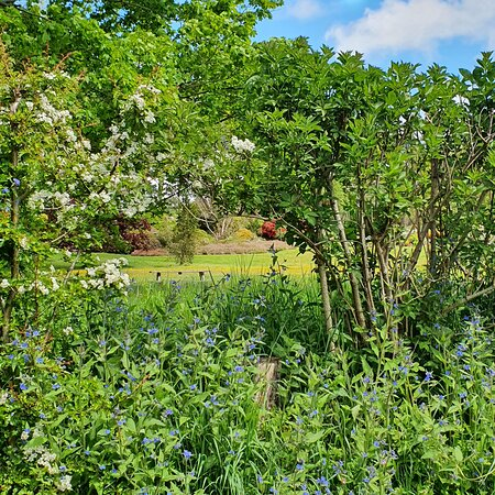 Ness Gardens May 2021