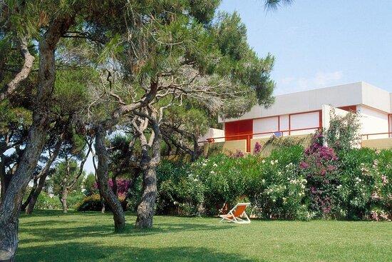 ROBINSON Apulia
