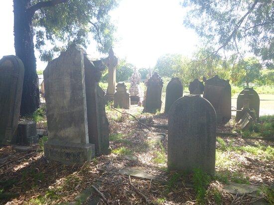 Lidcombe, Australia: Rookwood Cemetery