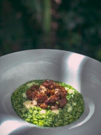 I piatti della nostra cucina vi stupiranno per ricercatezza e passione