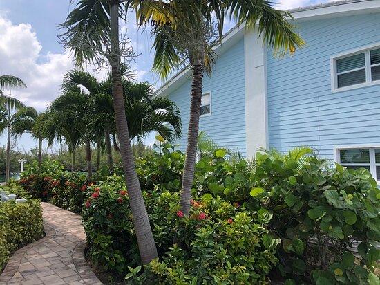 Bilder på Dolphin Cove – Bilder på Grand Bahama Island - Tripadvisor