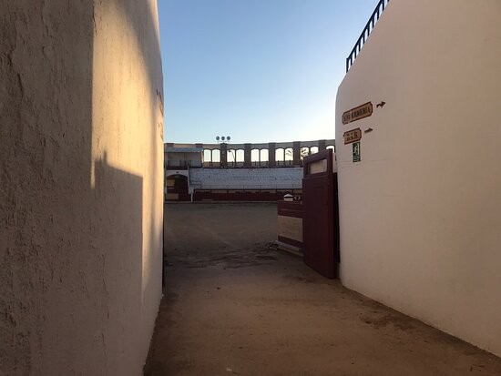 Visita obligada a esta Plaza de Toros de Vinaroz. La más cercana al mar y la de mayor diámetro de la arena