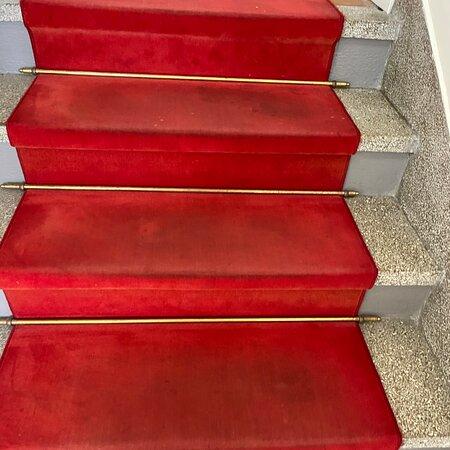 Tapis d'escalier et couloirs bourrés de taches , murs sales avec crochets apparents, canapé part en lambeaux