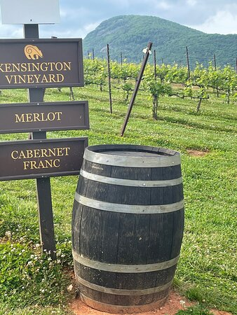 Don't miss this winery!