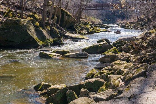 West Branch of Black River