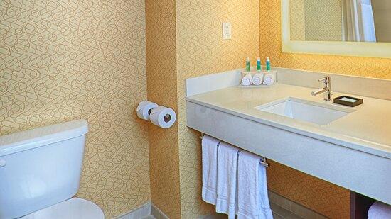 Guest Bathroom at Holiday Inn Express Bordentown-Trenton