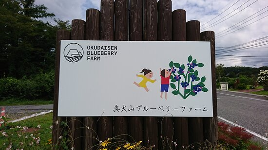 Kofu-cho, Japan: 19.08【奥大山ブルーベリーファーム】看板