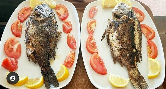 Magnesia Region, Greece: Only fresh fish