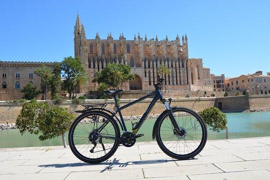 Kalkhoff Trekking Bike
