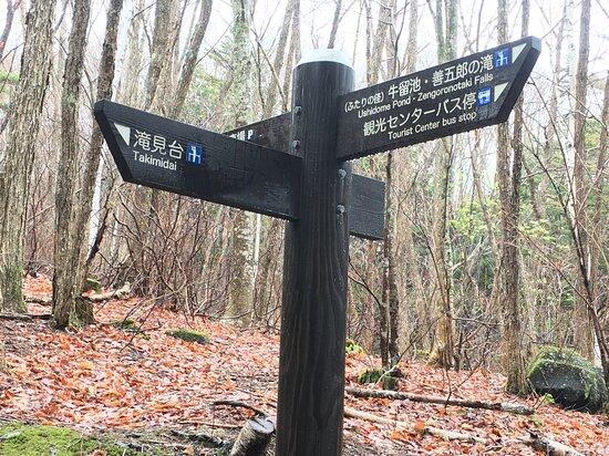 Matsumoto, Japan: 善五郎の滝入口看板