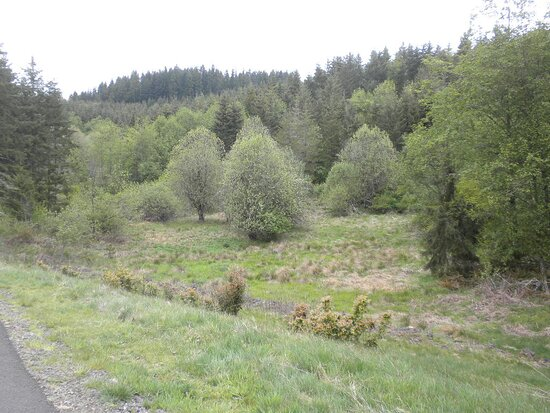 Beautiful scenery abound  among the hills and trees