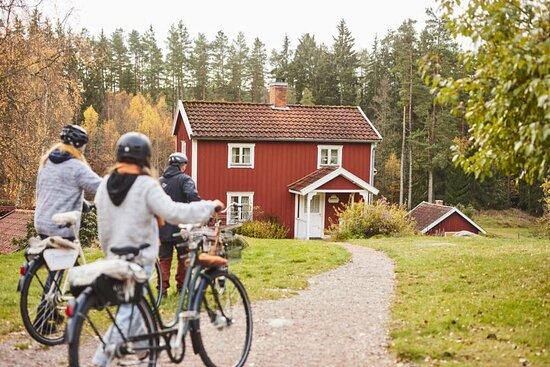 Cykla I Filmlandskapet