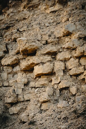Kimmeridgian limestone brings power and finesse to our Pinot Noir grapes