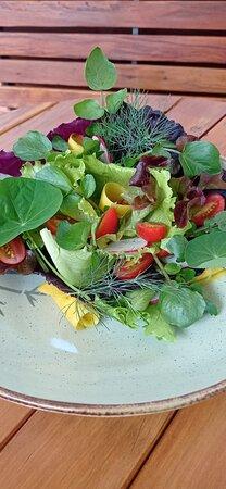 A quantidade de cores e a leveza dessa Salada Tropical. Seja como acompanhamento de uma refeição ou uma entradinha pra abrir o apetite. A nossa Salada Tropical vai te entregar o sabor e a saúde que você merece.  Comer é uma arte e te servir bem é a nossa paixão!