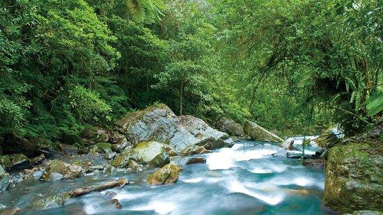 九寮溪自然生态教育园区