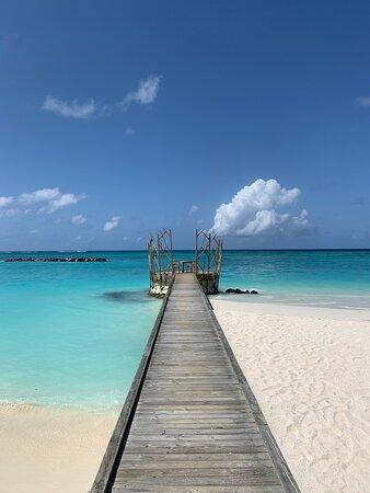 Best Island, Best People