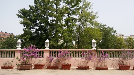 Terrace on 2nd floor