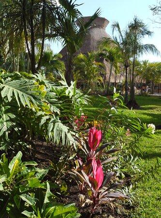 Mexiko: Viva Wyndham Azteca Resort garden, Playa del Carmen, Riviera Maya