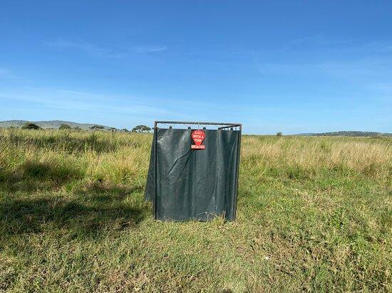 Serengeti Balloon Safari: Lue with a view