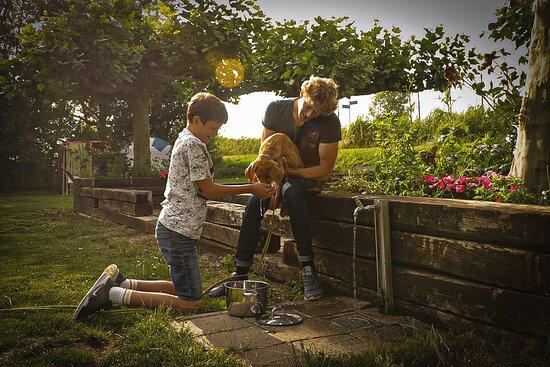 kids met hond