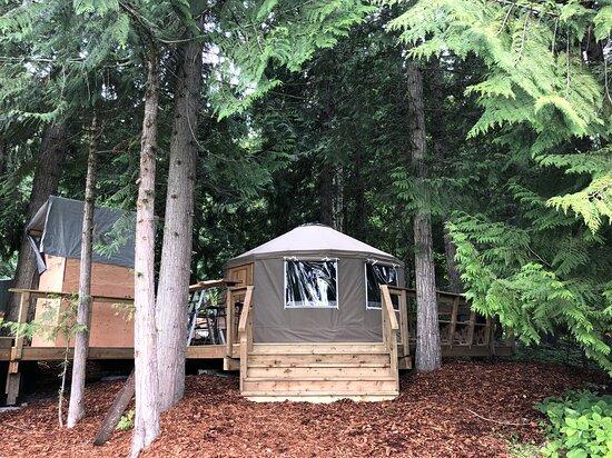 Yogi's Yurt