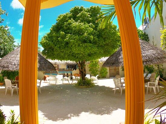 Rasdhoo Dive Club Hotel * Rasbeach Inn, just next to the beach, only few walking steps to beach. hotel located next beach 1 minute by Walk.