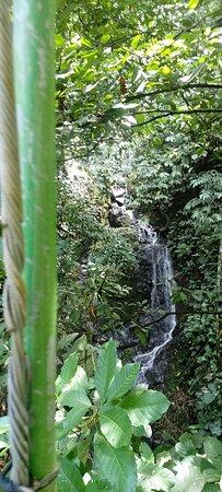 Naranjito, Costa Rica: One of two waterfalls on the tour thru Safariadventurescr.com