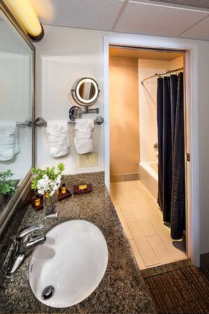 Standard Bath Area