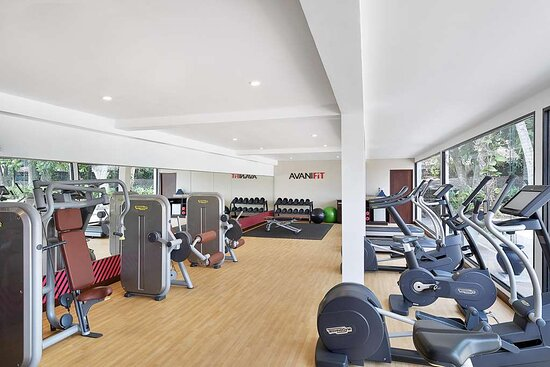Interior view of AvaniFit gym with equipment and garden view