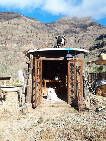 Adobe hut with Pottery, Olivewood, & engraved glass