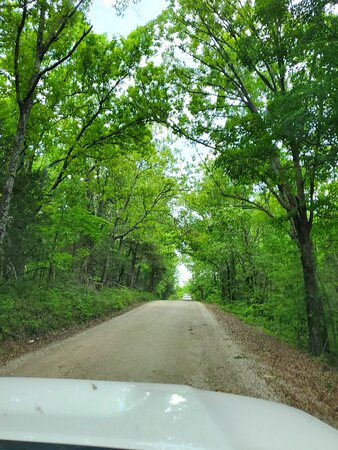 Ava, MO: Just beautiful, serene and peaceful. Gravel roads aren't that bad.