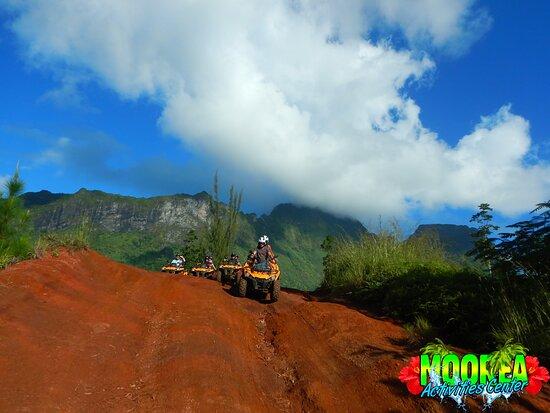 Papetoai, French Polynesia: ATV
