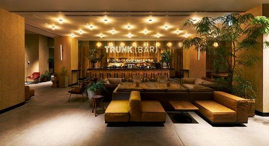 Trunk Bar