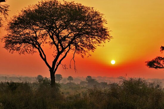 Ssemambo Tours And Travel