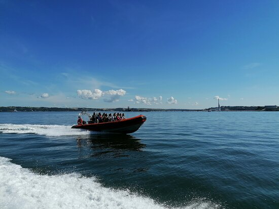 Cork Sea Safari