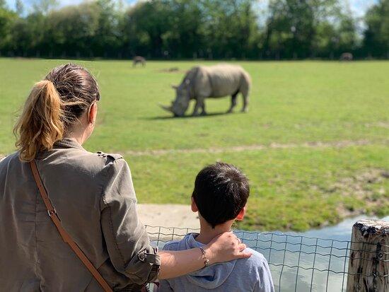 Zoo Cerza