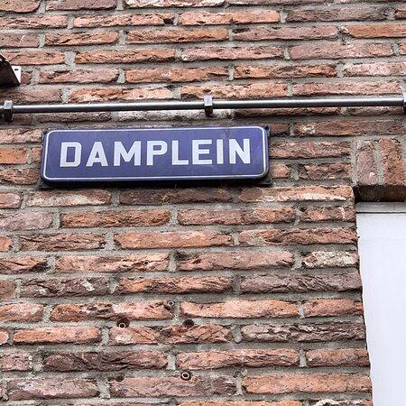 Damplein