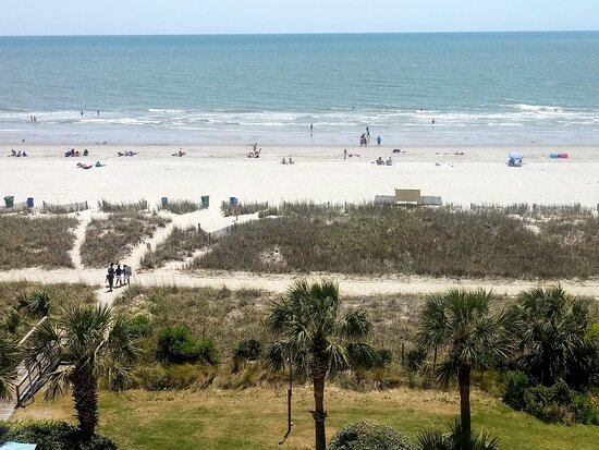 Our view of the Beach.