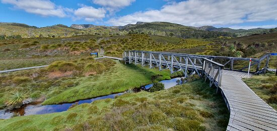 The Overland Track to Weindorfers Forest Walk