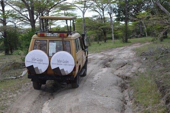 Dar es Salaam, Tanzania: Travel with us to witness the beauty of Tanzania Genuine Experience Experience the Difference